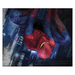 Spider-man. Размер: 60 х 50 см